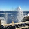 לימודי אוקיינוגרפיה Oceanography