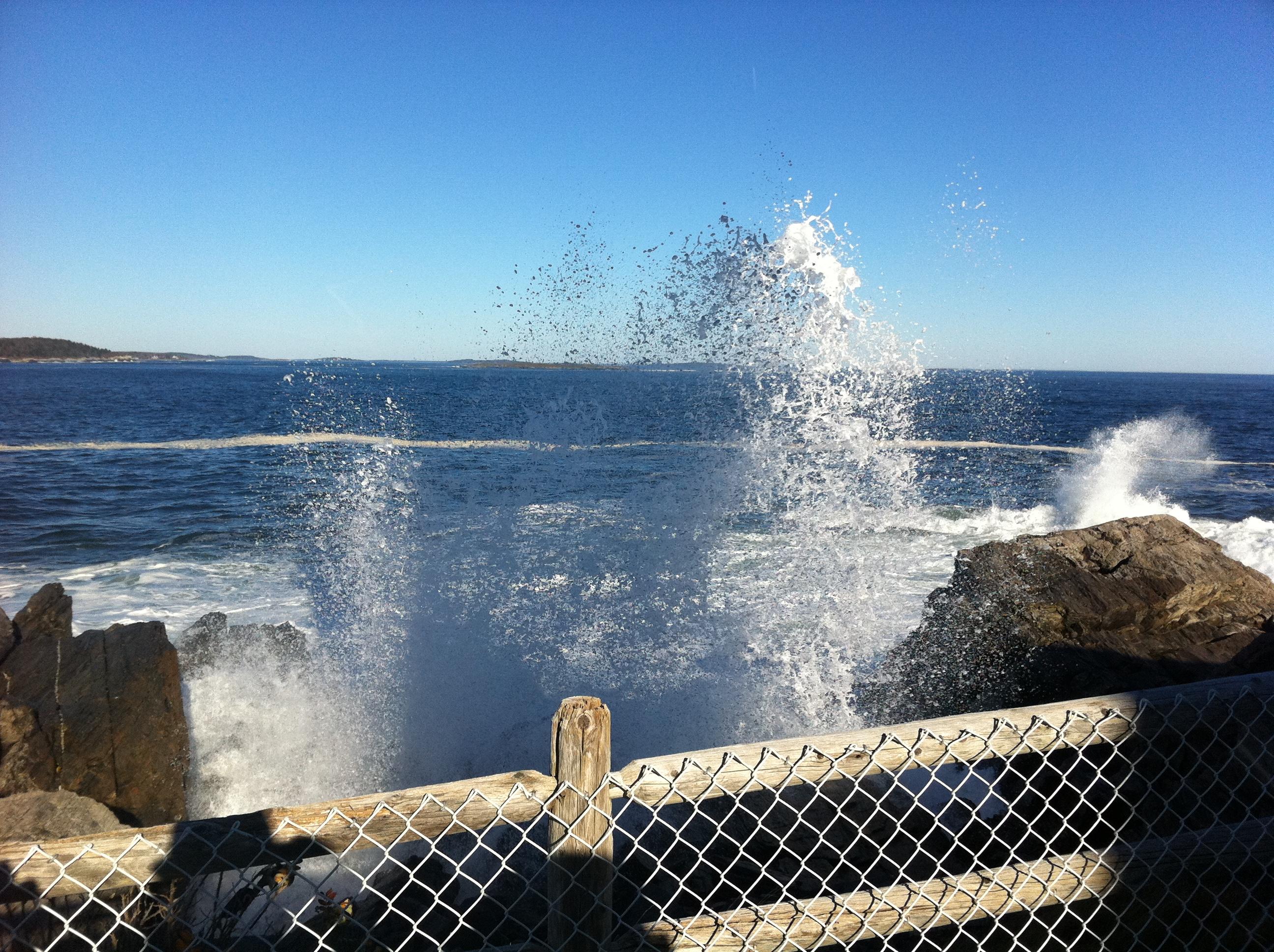 IMG_0273 לימודי אוקיינוגרפיה Oceanography